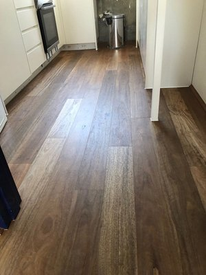 Preference Fiddleback Engineered Timber Spotted Gum Matt (Brushed) 0.6mm Veneer
