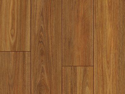 Elegance Premium Long Board Spotted Gum