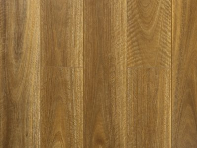 Elegance Premium Long Board NSW Spotted Gum