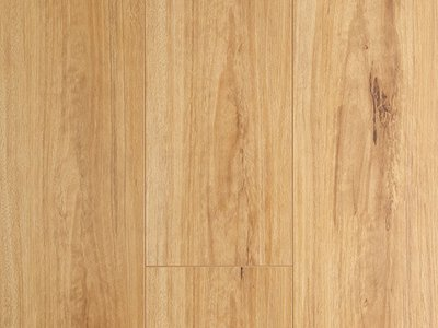 Oakleaf Laminate Blackbutt