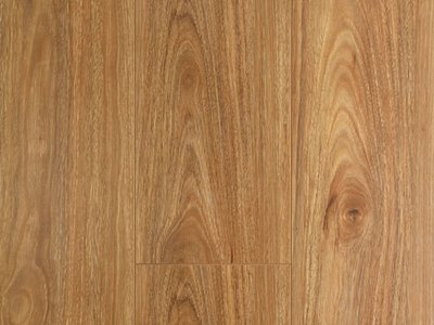 Oakleaf Laminate Spotted Gum
